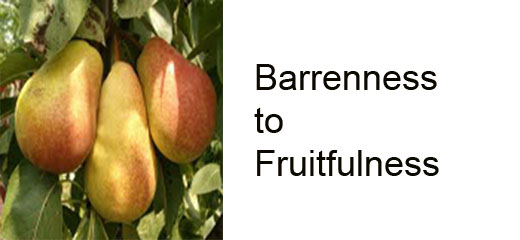 Barrenness_to_Fruitfulness